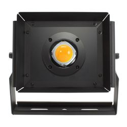 PKG 55W Flood Light